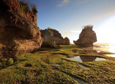 Padang Padang Beach | Ubud VW Tour