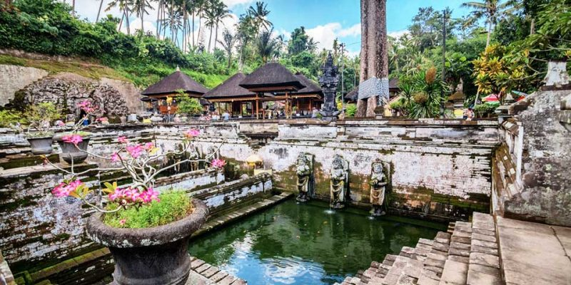 Goa Gajah Temple | Ubud VW Tour